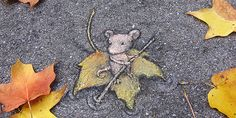 Street art and nature don't usually intersect, especially in large cities where most graffiti and tagging can be found. These gorgeous images are the exception — a beautiful melding of street art and urban flora. Urban Flora, Usa Street, Street Art Utopia, David Zinn, Chalk Art, Graffiti, Art Pieces, Artwork, Nature