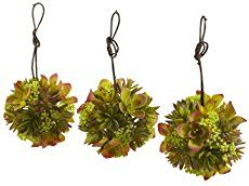 Decorate Your Garden by Making These Succulent Balls