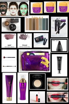 Presenter Kit  $99 + Free Shipping  $439 Value!!! Be a Kitnapper or Start your own business. The choice is yours.  Visit emilyenthof.com
