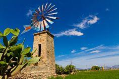Old Majorcan Windmills. #Mallorca. Spain