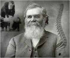 Before Dr. D.D. Palmer became the 'Founder of Chiropractic' in 1895 he was a magnetic practitioner in Burlington, Iowa. He offered his services to many patients and after 9 years of clinical experience and theorizing, Dr. Palmer decided that inflammation was the essential characteristic of all disease.   He came to the conclusion that displacements of anatomic structures were the cause of inflammation which led to the discovery of chiropractic treatments. Chiropractic Quotes, Chiropractic Treatment, Chiropractic Adjustment, Family Chiropractic, Chiropractic Office, Alternative Health, Alternative Medicine, Spine Health, Holistic Treatment