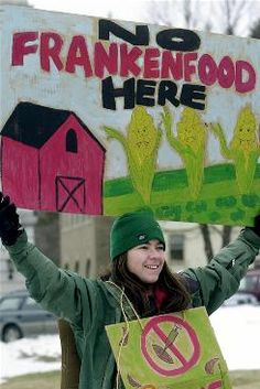 n 2009, the main genetically modified crops grown in the U.S. - 158.1Acres (millions) Soy, corn, cotton, canola