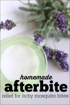 Homemade Afterbite (anti itch salve for mosquito bites)