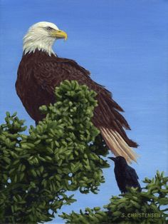 An Unlikely Duo - Acrylic Painting by Susan Christensen Bald Eagle, Art Gallery, Bird, Illustration, Prints, Painting, Design, Art Museum, Birds