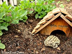 Toad House in your garden to enciorage natural pest control.