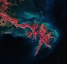 Mississippi River Delta from space