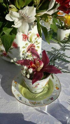 Eduardo Alexandry decorador & designer  Orquídea em louça