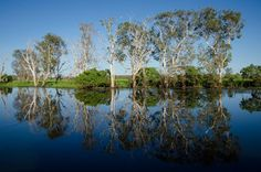 Marine Environments Waterways (Reflections on Yellow water in Kakadu NP by Glenn Walker)