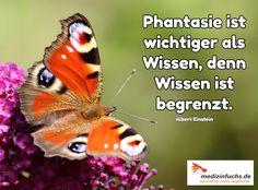 Ein wahres #Zitat . Wir können nicht alles #wissen aber #Phantasie ist grenzenlos... #Glück #Freude #Gesundheit
