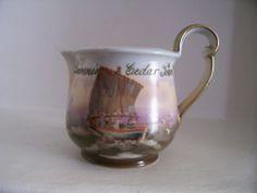 Extemely Rare Royal Bayreuth Cedar Point Souvenir Creamer