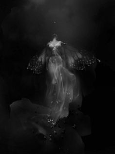 Madame Butterfly by SmithMicro ---- Butterfly. In some cultures, it is said that beautiful white moths arrive at death, to escort the Soul home. Art And Illustration, Bible Illustrations, Madame Butterfly, Butterfly Wings, Portraits, Faeries, Dark Art, Awakening, Mystic