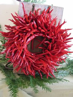 Organic chili peppers have been used to create this beautiful wreath. Wonderful for decorating with for the holidays and for cooking with. Grown in Mexico Christmas, Christmas Time, Christmas Wreaths, Christmas Crafts, Christmas Decorations, Holiday Decor, Southwestern Home Decor, Southwestern Decorating, Southwest Style