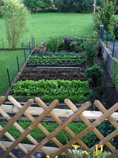 Neat & Tidy Row Garden - Perfect for my raised bed garden I'm going to attempt next spring season!