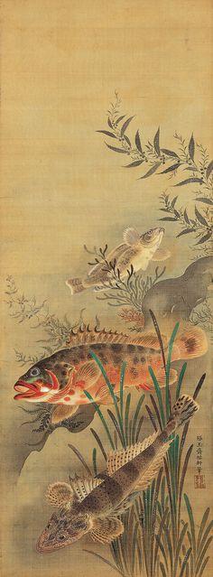 Kano Atsunobu (early 18th century)<br>狩野敦信