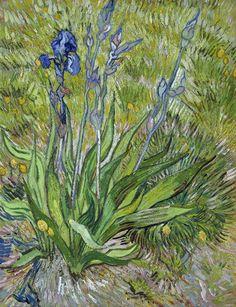 The Iris, (F.601)Vincent van Gogh, Saint-Rémy: May, 1889 National Gallery of Canada Ottawa, Ontario, Canada, North America