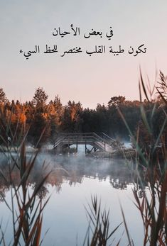 Arabic Poetry, Arabic Words, Arabic Quotes, Arabic Proverb, Arabic Typing, Rain Photo, Proverbs Quotes, Islamic Pictures, Study Motivation