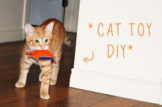 Cat Toy DIY tutorial