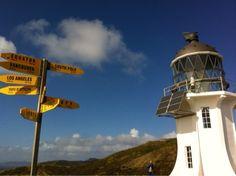 Billys Reise: Bis in den Norden zum Cape Reinga