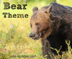 Preschool and Pre-K theme activities for bears. Literacy, math, printables book lists and more! (Goldilocks and the Three Bears ideas are located on the Three Bears page) Bear Books Corduroy Was a ...