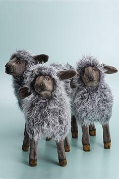 sheep counting
