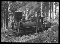 """Steam train engine and men in woods. """"Peggy"""" engine and spark arrester. 1910.  Palmer, Oregon"""