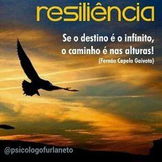 PSICOLOGIA JULIO FURLANETO: Resiliência. O que realmente significa?