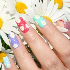 Multicolor Daisy Nail Art.