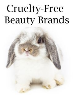 Cruelty-Free Beauty Brands