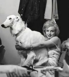 Marilyn Monroe And Borzoi. look at the Zoi's expression:)