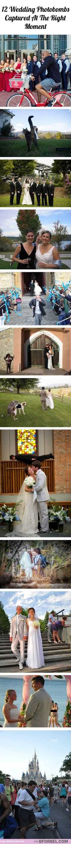 12 wedding photobombs captured at the right moment