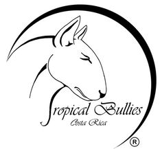 logo bull terrier - Hledat Googlem