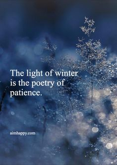 Winter has been my least favorite season for most of my life. Why can't that change, too? We don't need to stay stuck in any of our thoughts, and simply understanding that we can change is healing in itself. In honor of new chapters, whatever...