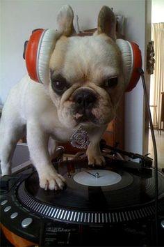 DJ MAMA (aka Funk Master Frenchie) | Stephen Bailey: Cultural Exchange Advocate
