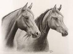 Echa con grafito por Magdalena Diaz, en esta imagen se puede apreciar la Belleza de los caballos, por eso a sido elegida por mi.