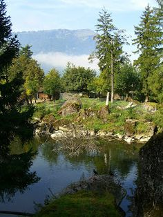 http://www.tierpark.ch - Tierpark Goldau is a wild animal park, southwest of Zug in the shadow of Mt. Rigi. The park has very natural setting, so it feels more like a walk in the woods than a zoo.