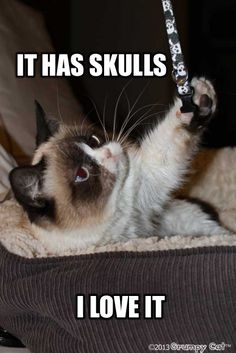 Grumpy Cat Just Hates Halloween And We're Not Surprised (Memes) - World's largest collection of cat memes and other animals Grumpy Cat Quotes, Funny Grumpy Cat Memes, Funny Cats, Funny Animals, Cute Animals, Grumpy Kitty, Funny Memes, Funny Quotes, Humor Quotes