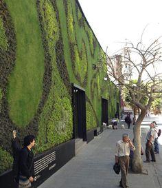 FERNANDO ORTIZ MONASTERIO, EL JARDINERO DE MÉXICO DF.  En su currículum florecen capullos como haber construido el jardín vertical más grande del mundo (2,900 m2. -Ciudad de los Cabos. Baja California-) o haber firmado los 350 muros verdes que están pintando de naturaleza México DF.  #Arquitectura #Sustentable