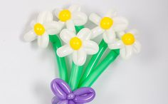 ► Free Subscribe ► http://bit.do/BalloonAnimal Using three balloons you can make a white daisy flower balloon figure. It is easy to make people happy with this nice talent. Do it yourself!   Watch this video and learn how to make a white balloon daisy  #balloon, #balloons, #balloon daisy, #daisy
