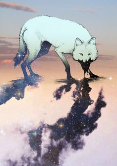 A wolf draining its color to give us the stars.