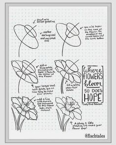 how to draw a flower instructions learn how to draw flowers like roses of lilies
