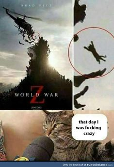 World War Z That Day I Was Fucking Crazy - Funny Memes. The Funniest Memes worldwide for Birthdays, School, Cats, and Dank Memes - Meme Crazy Funny Memes, Really Funny Memes, Stupid Funny Memes, Funny Relatable Memes, Haha Funny, Funny Stuff, Animal Jokes, Funny Animal Memes, Funny Animals