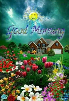 Good Morning Pictures, Images, Photos - Page 40 Good Morning Beautiful Pictures, Good Morning Nature, Good Morning Images Flowers, Good Morning Happy Sunday, Good Morning Roses, Good Morning Beautiful Images, Good Morning Images Hd, Good Morning Gif, Good Morning Greetings