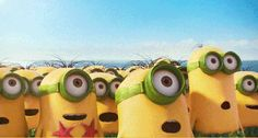 Check out all the awesome minions gifs on WiffleGif. Including all the despicable me gifs, excited gifs, and happy gifs. Minions Trailer, Minion Movie, Minions Comic, Minions Minions, Minions Quotes, Minion Banana, Minion 2015, My Minion, Tinkerbell