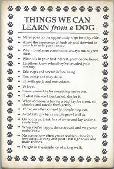 I'm learning!