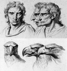 Physiognomy:  The goal of physiognomy is to judge character according to features of the face. LeBrun studied the lines linking different points of the head in a complex geometry which revealed the faculties of the spirit or character. Thus, the angle formed by the axis of the eyes and the eyesbrows could lead to various conclusions, depending upon whether or not this angle rose toward the forehead to join the soul or descented toward the nose and mouth, which were considered to be animal…