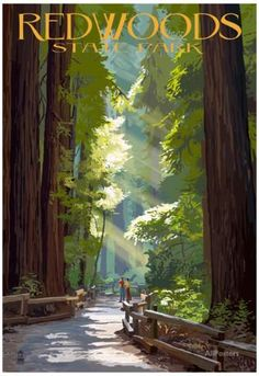 Big Sur California Coast Redwoods United States Travel Advertisement Art Poster in Posters Big Sur California, California Coast, Vintage California, California Travel, Muir Woods National Monument, Retro Poster, Vintage Travel Posters, Poster Poster, National Park Posters