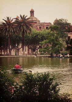 Ciutadella Park. Claimed to be one of the most beautiful parks in the world. Lots of people come here to take their wedding photos. Go, have a picnic, stroll around and just enjoy. #barcelona #spain #europe #tourist