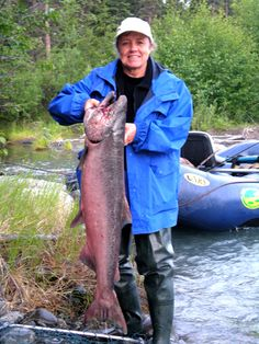 This is about a 40 pound King Salmon caught in the Klutina River, Alaska