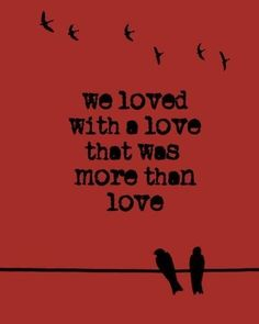 """""""We loved a love that was more than love""""  - Edgar and Annabelle"""
