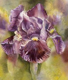 Iris In Purple Canvas Print / Canvas Art by Alfred Ng Purple Painting, Iris Painting, Iris Art, Purple Canvas, Canvas Art, Canvas Prints, Watercolor Paintings, Flower Paintings, Watercolour